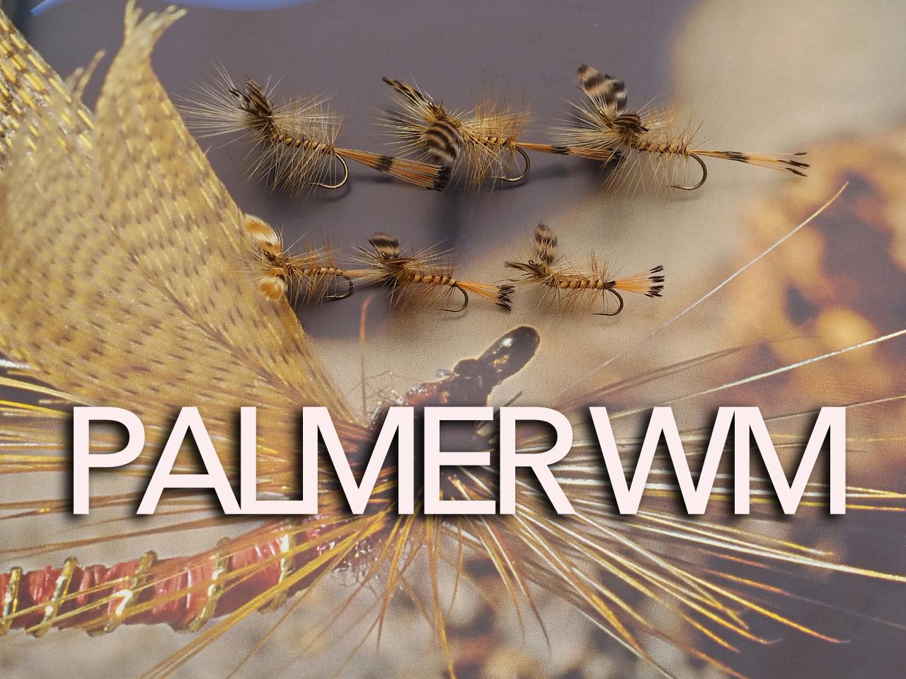 palmerwz