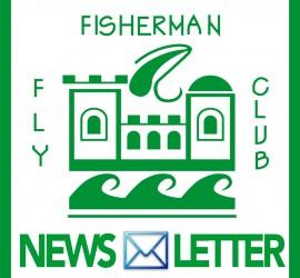 logo ffcnews
