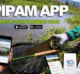 pipam app locandina uff