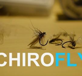 anteprima chiroflyg2