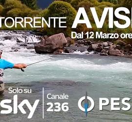 FB Avisio1